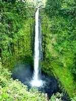 Cachoeira Akaka Falls - Foto: Yan Grossman
