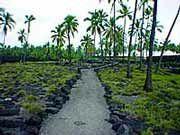 Pu'uhonua - Foto: Yan Grossman