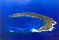 Maui5