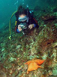 Mergulhador1